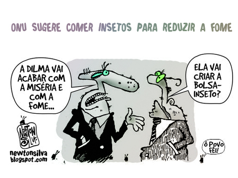 inseto_Bolsa-inseto-por-Newton-Silva